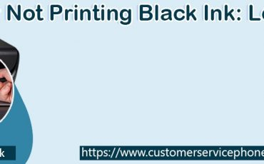 HP Printer Not Printing Black or Printing Blank Pages: Fix It